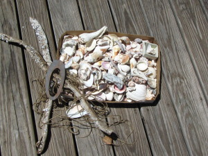 Sea Chime Workshop @ ReFind | Bay Head | New Jersey | United States