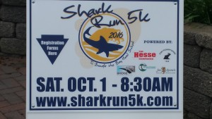 5K Shark Run @ Shark Run 5K | Bay Head | New Jersey | United States