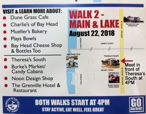 Mayor's Wellness Campaign Walk 2